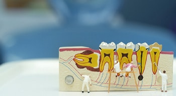 small figurines cleaning teeth